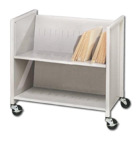 Buddy Products Two Slant Shelf Medical Cart, Steel, 16.125 x 30.25 x 31.875 Inches, Platinum (5422-32)