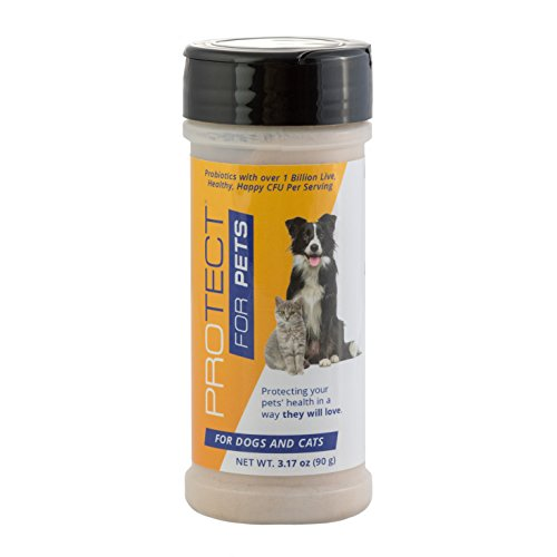Cheapest ProTect for Pets is The Easy-to-use probiotics Powder in a Shaker Bottle - No Fuss, No Mess. Helps Support a Healthy Digestive System in Your Dogs and Cats, Using The Best probiotic strains. Check this out.