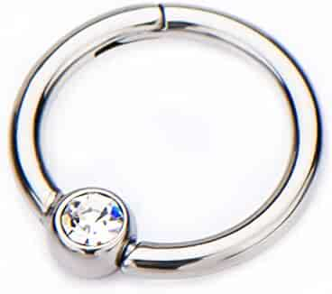 e7ae2326a 16G CZ Crystal Centered Stainless Steel Hinged Segment Ring for Septum,  Nostril, Lip,