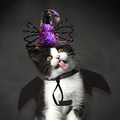 LESYPET Cat Halloween Hat - Witch Wizard Halloween Costume Hat with Bat Wings for Cats Dogs -