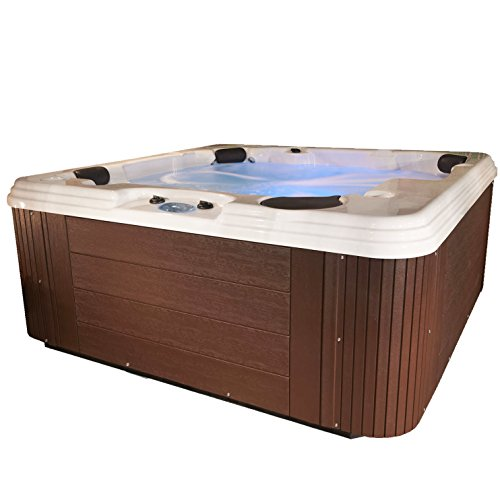 Essential Hot Tubs 50 Jets Polara Sterling Silver Shell, Espresso