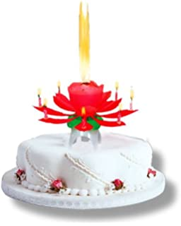 Kerze Mit Musik HAPPY BIRTHDAY LOTUS CANDLE Amazonde Spielzeug