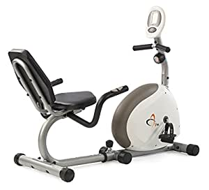 V-Fit G-RC Recumbent Magnetic Cycle - Bicicletas estáticas ( interior, magnético ), color Silver-Grey and Green