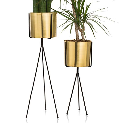 Set of 2 Modern Brass Gold Planter with Metal Plant Stand | 7 Inch Large Pot with Black Mid Century Stands | Flower Pot Decor | for Orchid, Aloe, Big Cactus | 18 & 26 Inch Tall | Indoor Decoration ()