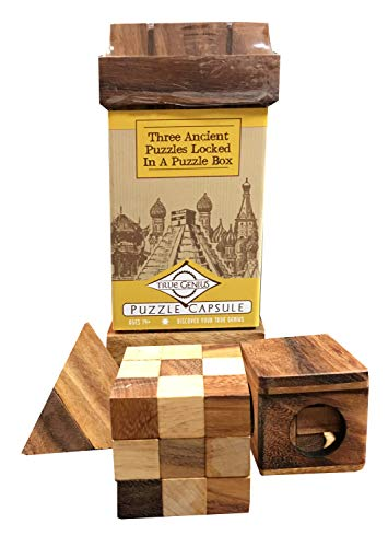 True Genius Puzzle Capsule Wooden Assorted Disassembly - Spatial Awareness - Dexterity