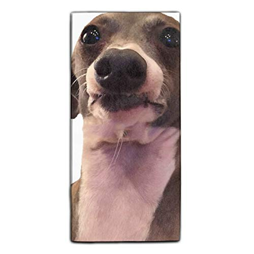 Kermit Funny Face (Jenna Marbles Dog Kermit Still Being Nervous Hand Towel - Multipurpose Bathroom Towels for Hand, Face, Gym and)