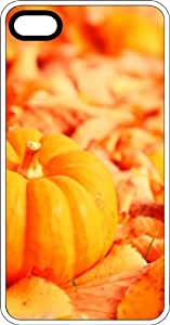 Orange Pumpkin Harvest Clear Plastic Case for Apple iPhone 4 or iPhone 4s