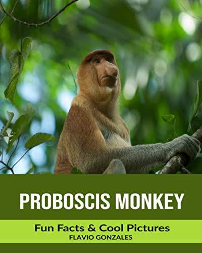 (Proboscis Monkey: Fun Facts & Cool Pictures)