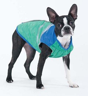 Fashion Pet Out and About Dog Coat Medium Green, My Pet Supplies