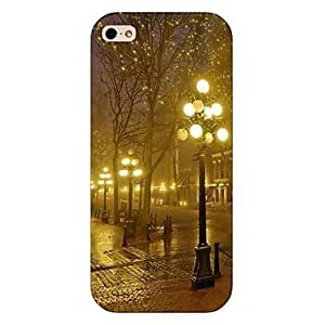 ZL Square Nightscape Lighting Pattern Back Case for iPhone5/5