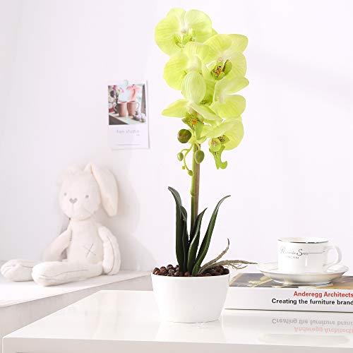 Green Flower Arrangements (LOUHO Phaleanopsis Arrangement with Vase Decorative Artificial Orchid Flower Bonsai (Green))