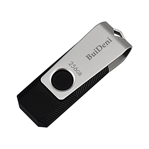 BuiDeni USB 2.0 Flash Memory Drive 256GB with Key (BD/8256)