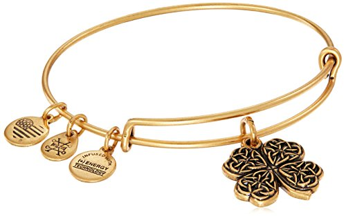 Alex and Ani Four Leaf Clover IV Rafaelian Gold Bangle Bracelet