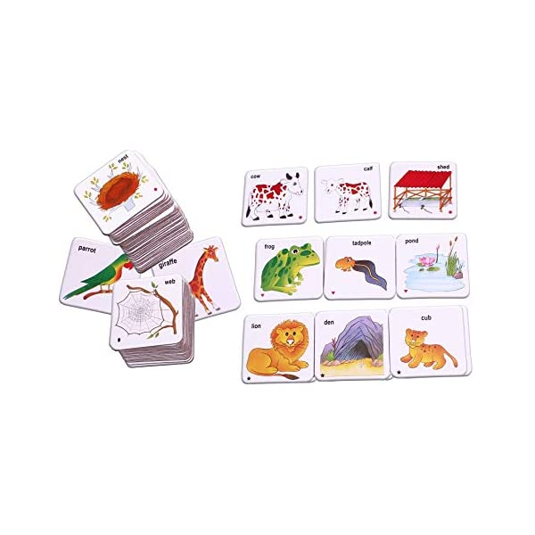 Best Card Games for Preschoolers India