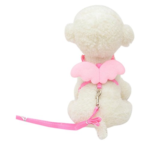 Kim88 Pet Puppy Cute Angel Pretty Set Designer Wing Adjustable Leads and CollarsAccessories (Pretty Puppy)