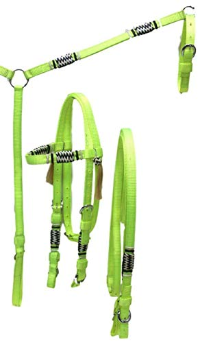 - D.A. Brand Deluxe Nylon Bridle/Breast Collar w/Braided Rawhide Trim Horse Tack(Neon Lime Full)
