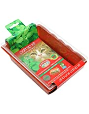 Mr Fothergill's Catnip Seed Raiser Kit