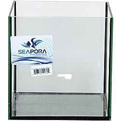 Seapora 52198 Rimless Cube Aquarium, 4 Gallon