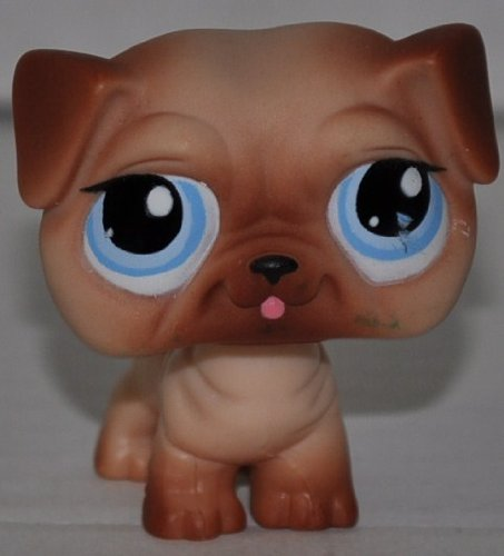 Pug #1312 (Tan/Brown, Blue Eyes) Littlest Pet Shop (Retired) Collector Toy - LPS Collectible Replacement Single Figure - Loose (OOP Out of Package & Print) ()