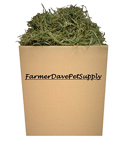 25 Lb Second Cut Timothy Hay, Guinea Pig and Chinchilla Hay