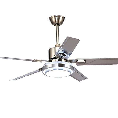 RainierLight Modern Ceiling Fan 5 Stainless Steel Blades Remote Control LED 3 LED Changing Light (White/ Warm/ Yellow) for Indoor Mute Energy Saving Electric Fan (48inch)