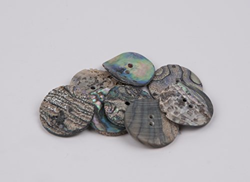 - Abalone Shell Discs - 1 Inch 2 Hole, 12 pieces