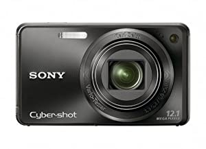 Sony Cyber-shot DSC-W290 12 MP Digital Camera with 5x Optical Zoom and Super Steady Shot Image Stabilization