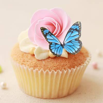 Party Baking Color Family Cartoon Scenario Birthday Cake Decoration Happy Birthday Card Plugin Simple Child Cyan