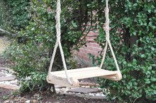 Cruze's Contoured Cypress Tree Swing (Louisiana Cypress Swings)