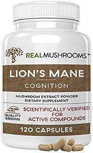 Lion's Mane Mushroom Cognition Capsules (120caps), Organic Lions Mane Mushroom Powder Extract Capsules, Brain
