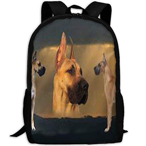 DKFDS Backpacks Funny Dogs School Rucksack College Bookbag Unisex Travel Backpack Laptop Bag