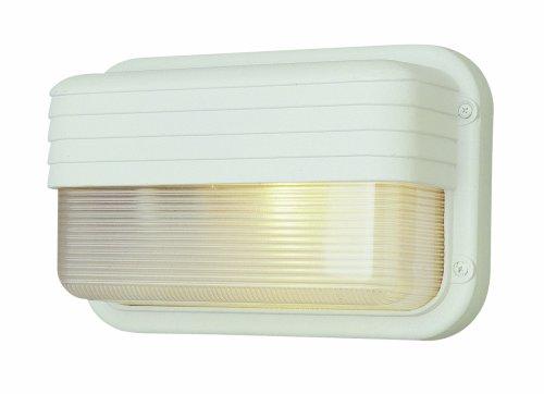 - Trans Globe Lighting 41102 BK Outdoor Mesa 6.5