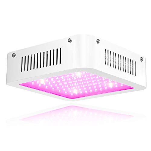 LED Grow Light 600W – Carambola Full Spectrum Growing Lamp for Hydroponic Indoor Plants Veg and Flower