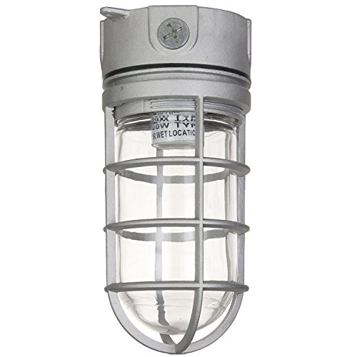 Sunlite VT100 5.5-Inch 100 Watt Vapor Proof Vandal Proof Outdoor Fixture, Metallic Finish Clear Glass (2)