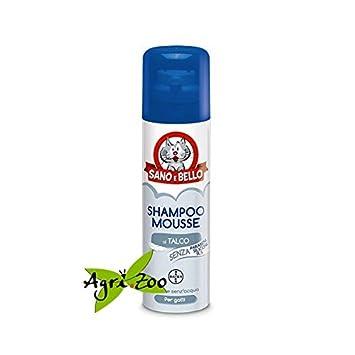 Shampoo Mousse seco 200 ml para gatos: Amazon.es: Productos para mascotas