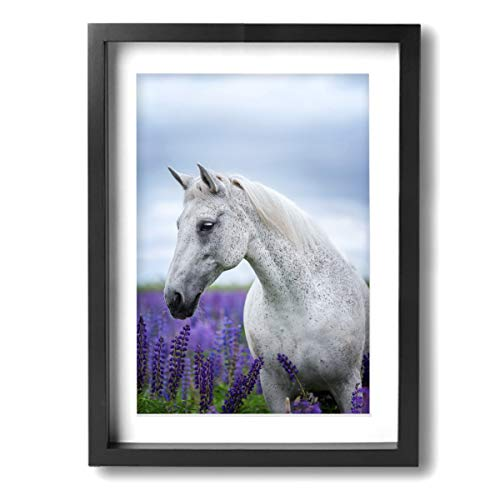- Ale-art Arabian Purebred Horse in Lavender Field Frame Bathroom Wall Pictures -Contemporary Pictures Canvas Painting Modern Artwork for Home Decoration Framed Ready to Hang