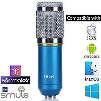 StudioStar BM-800 Professional Studio Condenser Microphone (Silver)