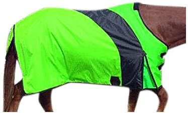 Intrepid International Prima Medium Weight Turnout Blanket, 83-Inch, Lime Green (Turnout Medium Weight)