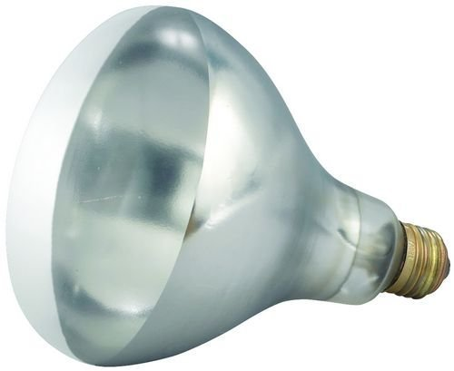 Winco - Bulb for Heat Lamp, Replacement Bulb for EHL-2, EHL-BW, Clear, 250W (Heat Lamp Food)