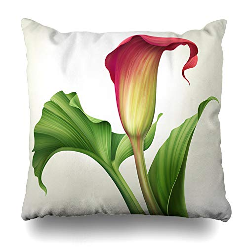 Calla Bordered Lilies (Ahawoso Throw Pillow Covers Gardening Red Abstract Creative Calla Lily Flower Green Nature Leaves Painting Jungle Foliage Garden Home Decor Pillowcase Square Size 20