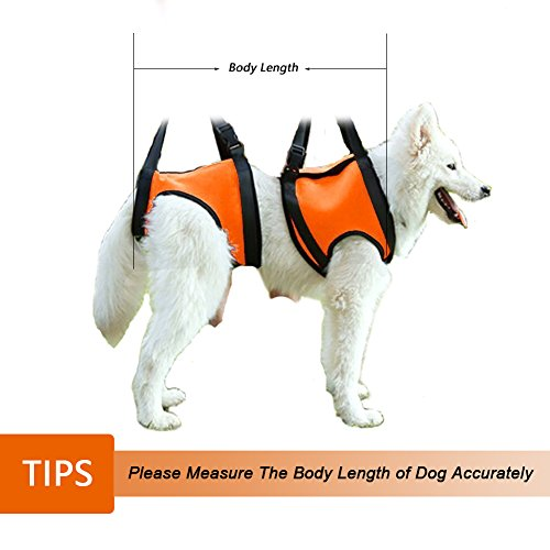 41AIIKvJ9rL._SS500_ 80%off lifeunion dog foreleg and hind rear legs sling dog lift