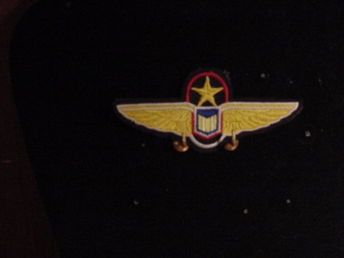 Babylon 5 Sew on Pilots wings Patch