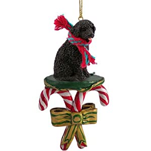 Conversation Concepts Portuguese Water Dog Candy Cane Ornament 12