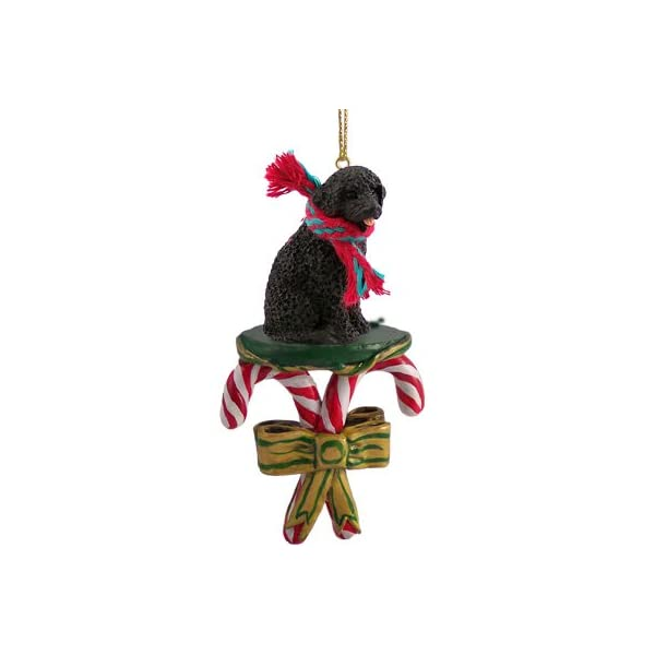 Conversation Concepts Portuguese Water Dog Candy Cane Ornament 1
