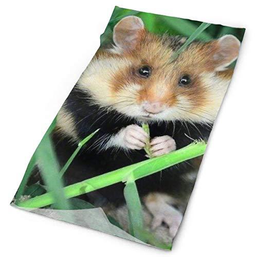 Cute Hamster Kerchief Neck Gaiter Do Rag Pirate Cap Mask Wrisband Headband Fairband Foulard Scunchy Adult Teen