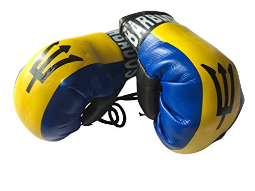 Flag Mini Small Boxing Gloves to Hang Over Car Automobile Mirror – Americas (Country: Barbados)