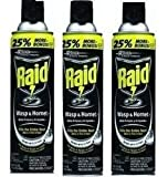 Raid - Raid Wasp and Hornet Spray- 3 Pack