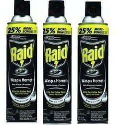 raid-raid-wasp-and-hornet-spray-3-pack