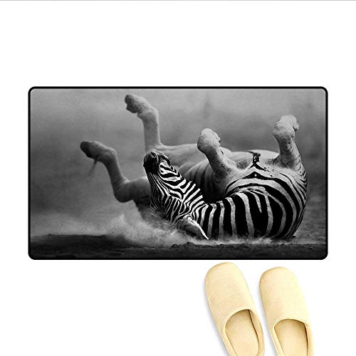 - Bath Mat,Zebra Rolling in The Dust Artistic Savage Animal Mammal Activity Eco Photo,Doormat Outside,Black and White,Size:32