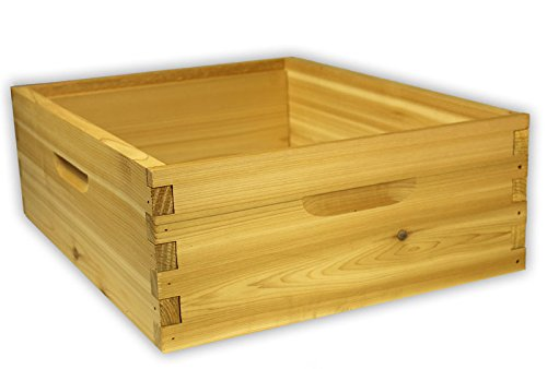 ARBORIA 10 Frame Medium Hive Box Premium Cedar Wood for Langstroth Beekeeping Made in USA, 16 x 19 x 6 Inches